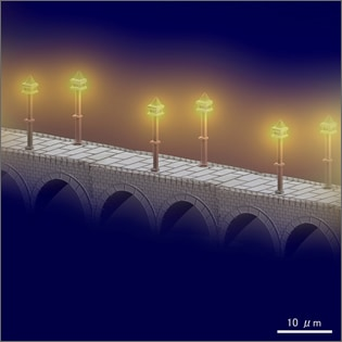 The light of gas lamps on the arch bridge