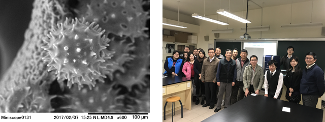 Left: The pollen of the hibiscus Right: 13 teachers of the junior high school which participated