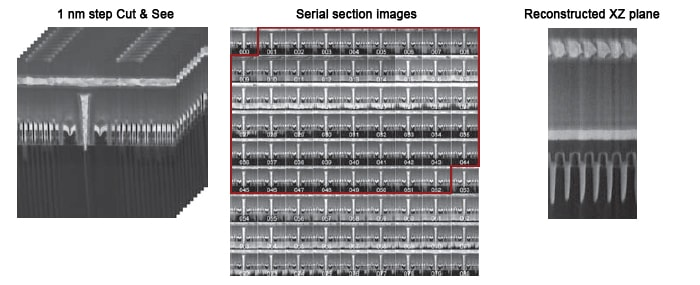 1nm step Cut&See , Serial section images