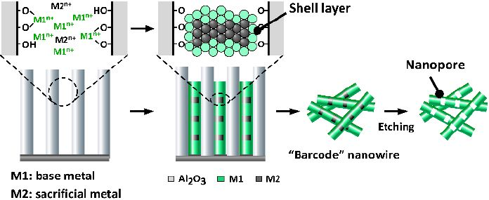 Procedure for fabricating hollow barcode nanowires