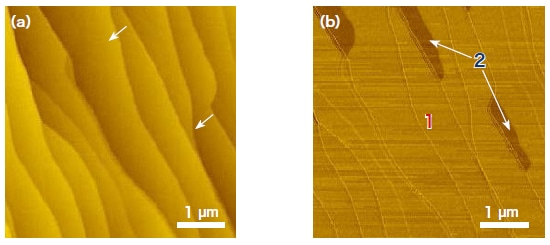 Scanning-probe microscopy images of graphene on SiC. (a) Morphology image. (b) Phase image