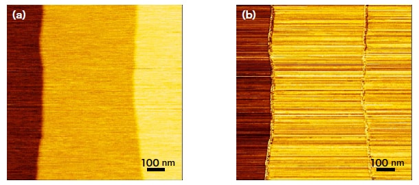 SPM images obtained with nanocarbon probe. (a) Morphology image. (b) Current image