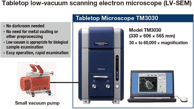 who invented the scanning electron microscope
