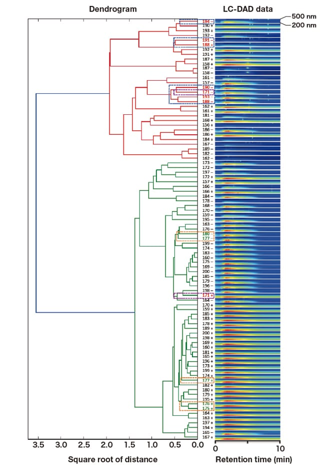 Fig. 3  Hierarchical cluster analysis of LC-DAD data