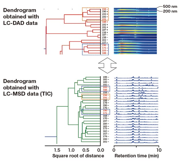 Fig. 6  Comparison of dendrograms generated for culture samples with strong fluorescence between 390 and 400 nm: LC-DAD and LC-MSD (TIC) datasets