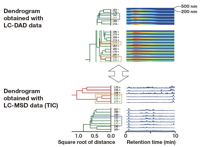 Fig. 7  Comparison of dendrograms generated for culture samples with strong fluorescence at or above 430 nm: LC-DAD and LCMSD (TIC) datasets