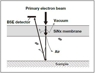 Principles of electron-beam detection.