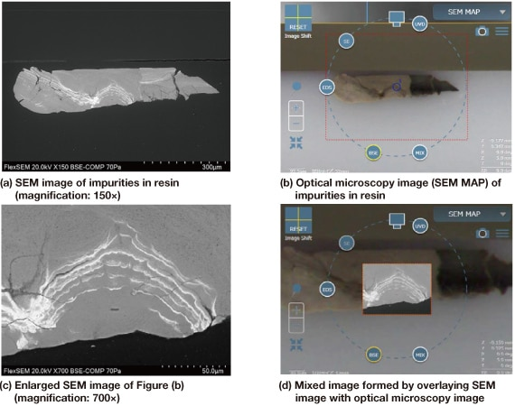 Fig 6. Examples of observation images using SEM MAP