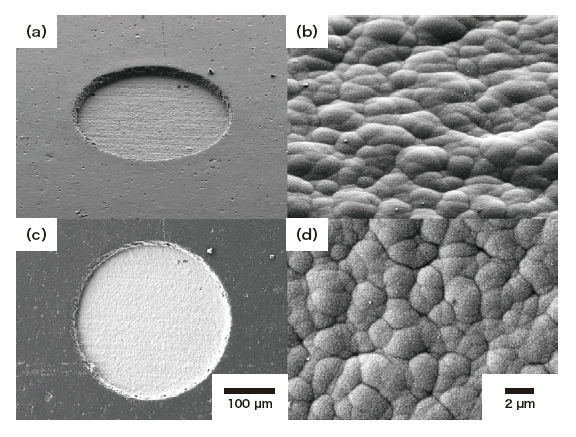 Fig. 3 SEM (secondary electron) micrographs of Ni/Pd/Au plating surface on Cu.