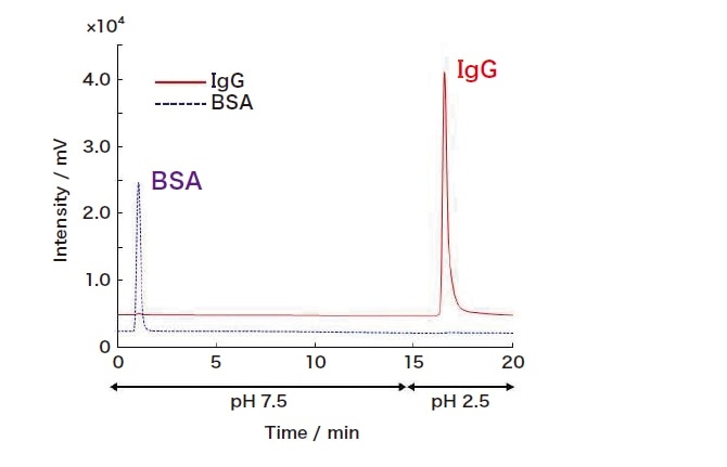 Fig. 2 Characteristic retention of IgG via a ProA-SPM column