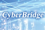 Actual Performance Management and Analysis System CyberBridge